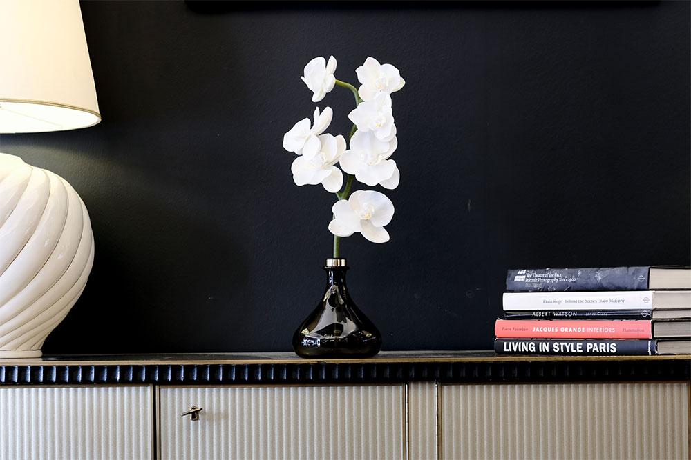 Senti Orchid with books
