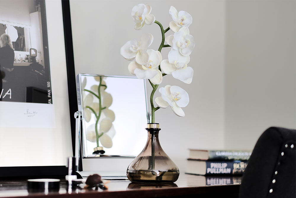 The Orchid reflecting in mirror